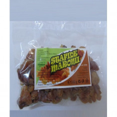 STAFIDE MARONII - Fructe