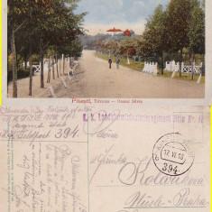 Salutari din Pitesti - Ocolul Silvic-cenzura WWI, WK1 - Carte Postala Muntenia 1904-1918, Circulata, Printata