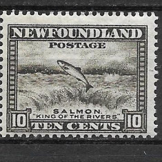Newfoundland 1932 MNH, Nestampilat