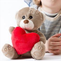 Ursuleț de Pluș cu Inimioară