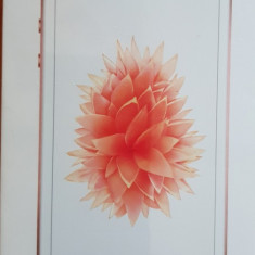 IPhone SE 32GB - Telefon iPhone Apple, Roz