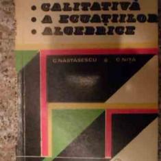 Teoria Calitativa A Ecuatiilor Algebrice - C.nastasescu C.nita, 539385 - Carte Matematica