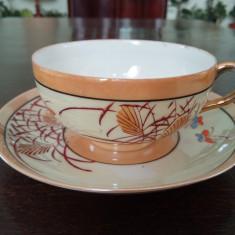 Cescuta de cafea portelan Japonez