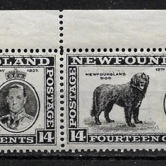 Newfoundland 1937, Nestampilat