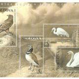 Moldova 2003 - pasari protejate, bloc neuzat