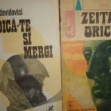 Doru Davidovici Zeita de Uricale vol1