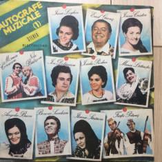 Autografe muzicale vol 1 album disc vinyl lp Muzica Populara electrecord folclor compilatie, VINIL