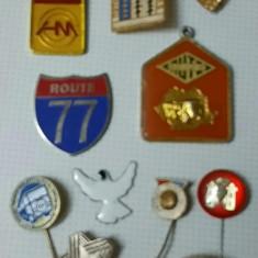 Colectie insigne vintage