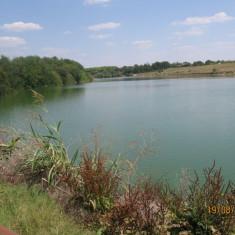 Balta pescuit, deosebita, langa Bucuresti: Valea Bisericii II