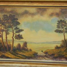 Tablou DIMENSIUNI MARI - ulei pe carton tare CIOBAN CU OILE - Pictor strain, Natura, Realism