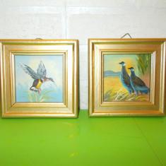 PASARI SALBATICE, doua mici PICTURI in ULEI pe placaj, inramate - Pictor strain, Animale, Altul