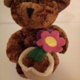 Ursulet  de plus