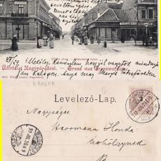 Oradea -iudaica, magazine evreiesti, clasica, animata - Carte Postala Crisana pana la 1904, Circulata, Printata