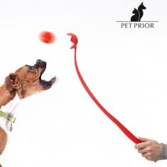 Lansator de Mingi pentru Câini Pet Prior