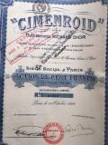 100 Franci actiune Cimenroid Richard Dior Franta 1924 cu cupoane