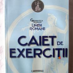 GRAMATICA DE BAZA A LIMBII ROMANE. CAIET DE EXERCITII, G. Pana Dindelegan, 2016 - Culegere Romana