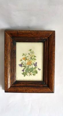 Tablou buchet flori (imparimat pe hartie), rama groasa de lemn, cu sticla foto