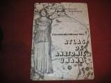 ATLAS DE ANATOMIE (vol. lll) - MIRCEA IFRIM