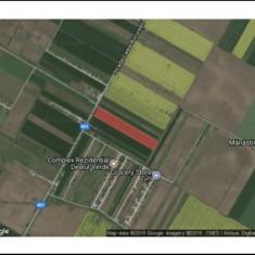 Teren Vidra-Berceni - Teren de vanzare, 16500 mp, Teren extravilan