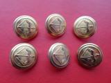 Lot 6 nasturi aurii metalici, motiv vanatoare
