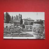 TIMISOARA - CIRCULATA, Fotografie