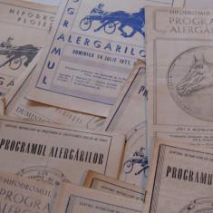 Lot 30 programe alergari hipice Hipodromul din PLOIESTI (anul 1977)