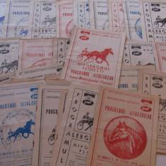 Lot 40 programe alergari hipice Hipodromul din PLOIESTI (anul 1979)