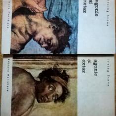 Irving Stone – Agonie si extaz {2 volume, Col. Biblioteca de arta} - Roman