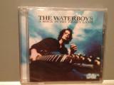THE WATERBOYS - A ROCK IN THE .....(2000/RCA/GERMANY) - CD ORIGINAL/NOU/SIGILAT, BMG rec