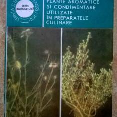 Plante aromatice si condimentare utilizate in preparatele culinare