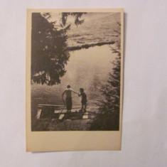 CA - Ilustrata Valea Sebesului