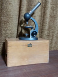 Microscop German in cutie