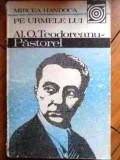 Pe urmele lui al. o. teodoreanu pastorel de mircea handoca, Mircea Handoca
