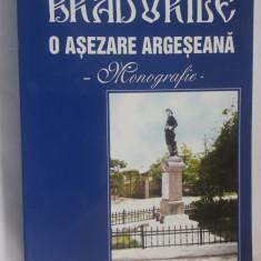 Bradurile - O asezare Argeseana. Monografie -NEGOI BOGDAN , CARTE CA NOUA .
