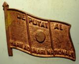 I.293 INSIGNA ROMANIA DEPUTAT AL MARII ADUNARI NATIONALE REBUT L24mm