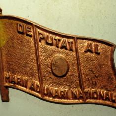 I.293 INSIGNA ROMANIA DEPUTAT AL MARII ADUNARI NATIONALE REBUT L24mm, Europa