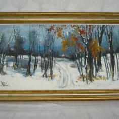 Nicolae Blei