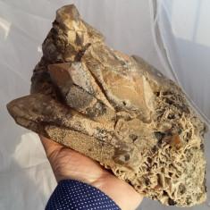 CUART FUMURIU MARE FRUMOS ROCA FLOARE MINA - Fosila roca