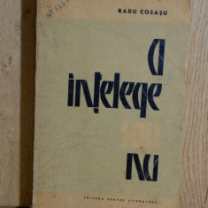 Carte - A intelege sau nu - Radu Cosasu ( Roman, anul 1965 ) #558