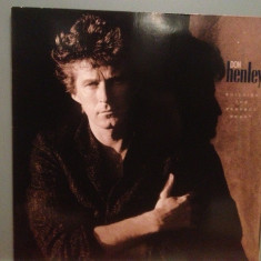 DON HENLEY (Eagles) - BUILDING THE PERFECT BEAST (1984/GEFFEN/RFG) - Vinil/M-, Geffen rec