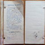 Cotor cu zeci de certificate de botez din com. Crevedia , jud. Dambovita , 1908