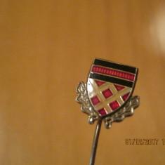 Insigna tip Pin- Germania - Jubiliare