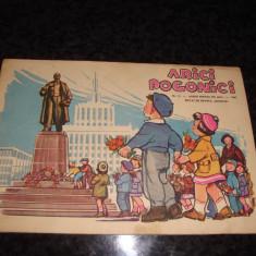 Arici Pogonici - nr 11 din 1961 - Carte educativa