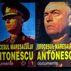 Procesul maresalului Antonescu, documente {2 volume} - Istorie