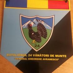 MCFA - FANION - MILITAR - VANATORI DE MUNTE