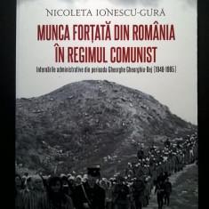 Nicoleta Ionescu-Gura - Munca fortata din Romania in regimul comunist - Istorie