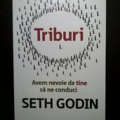 Seth Godin - Triburi - Carte Psihologie
