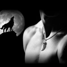 Pandantiv medalion colt domineering cu snur colt de lup medalion barbati gothic - Pandantiv fashion
