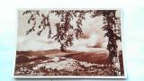 VALEA PRAHOVEI-CARTE POSTALA ANII 40-NECIRCULATA, Printata