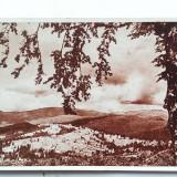 VALEA PRAHOVEI-CARTE POSTALA ANII 40-NECIRCULATA - Carte postala tematica, Printata
